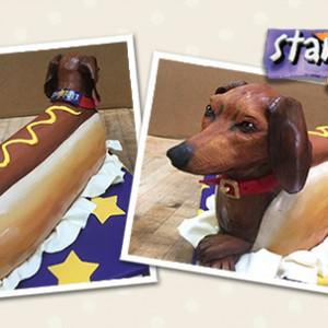 Wiener Dog - Star 101.3