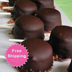 Cheese Cake Pops - Free Shipping